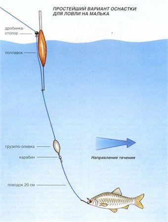 спиннинг для ловли судака с лодки