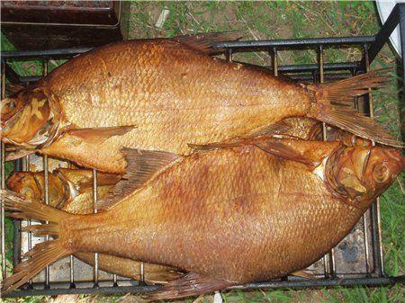 Коптилка своими руками для рыбы