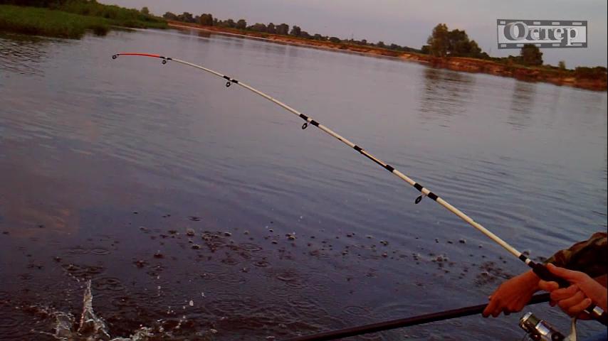 рыбалка на озере мичигане