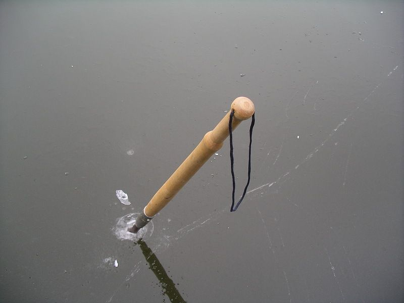 как ловить толстолобика на течении на технопланктон