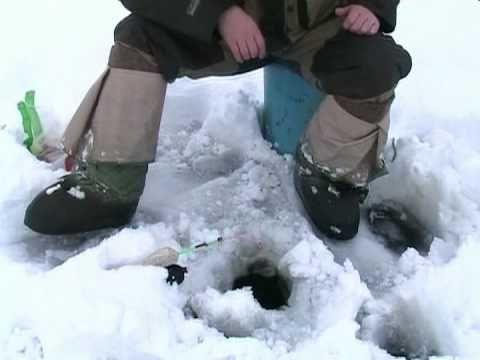 на что клюет зимой толстолобик