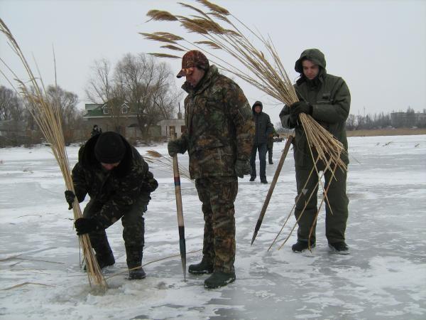 Замор рыбы или «придуха», ловля рыбы в замор зимой Задача рыбака найти тот