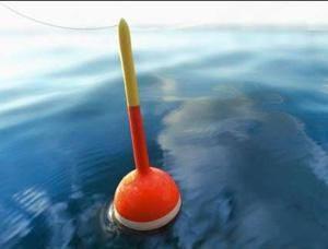 Какой должен быть поплавок для рыбалки на карася
