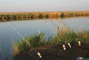 фидер-на-озере-весной