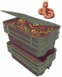 как разводить червей в домашних условиях