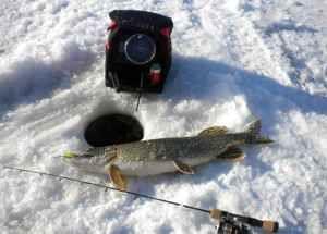 отзывы про эхолоты для зимней рыбалки