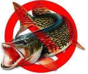 новые правила любительской рыбалки