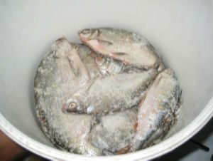 Засолка рыбы перед сушкой