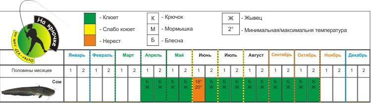 Календарь ловли сома