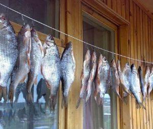 Как сушить рыбу на балконе