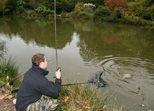 Как ловить карпа на поплавочную удочку