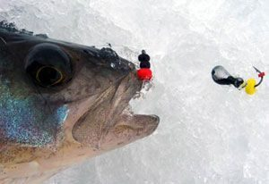 Мормышка - одна из самых эффективных зимних оснасток