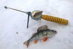 Мормышки для зимней рыбалки на окуня -муки выбора