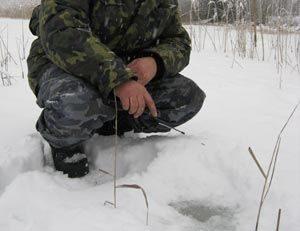Процесс ловли красноперки со льда зимой