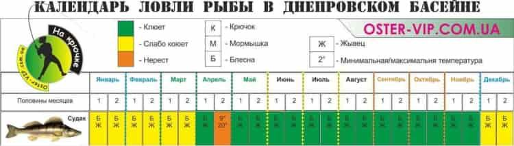Календарь лева судака