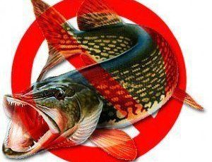Запрет на рыбалку