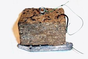 Что такое ловля карпа на макуху (макушатник)