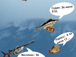 Штрафы за ловлю рыбы